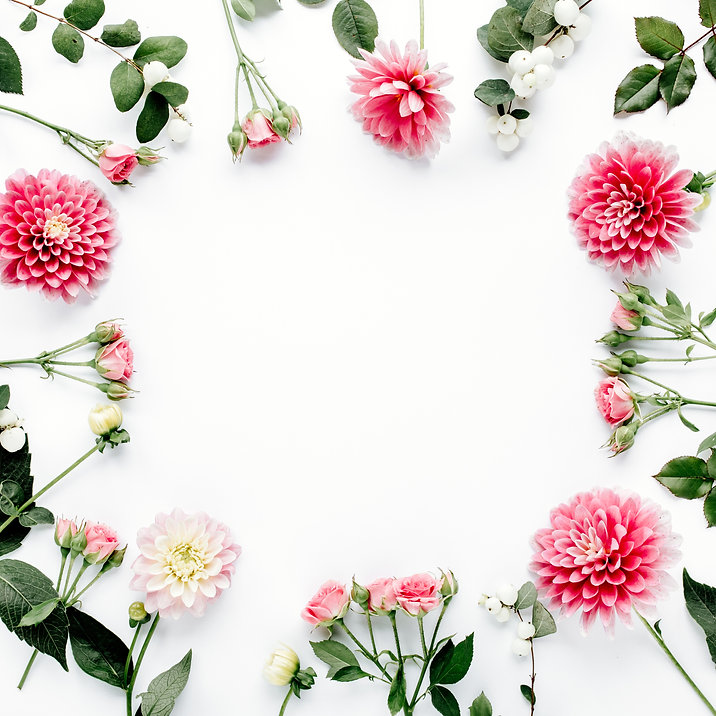 Round frame with pink flower buds, branc
