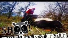 SHOO! Adventures in Pest Control
