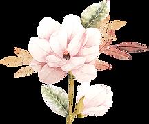 test-fleursoury-1.png