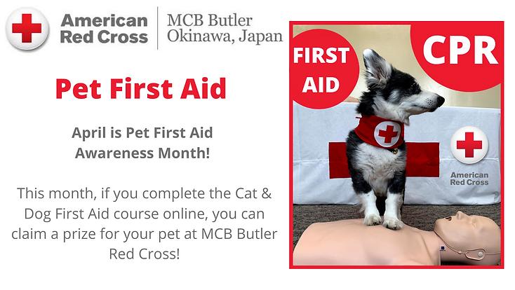 April is Pet Firt Aid Awareness Month!.p
