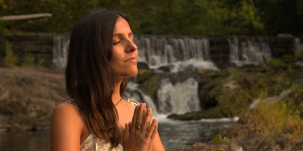 Nature's Medicine: Essential Oils for Anxiety