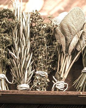 herbs_edited_edited.jpg