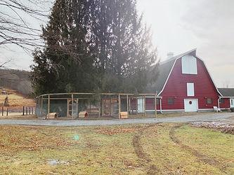 Safe Haven Farm Sanctuary Barn.jpg