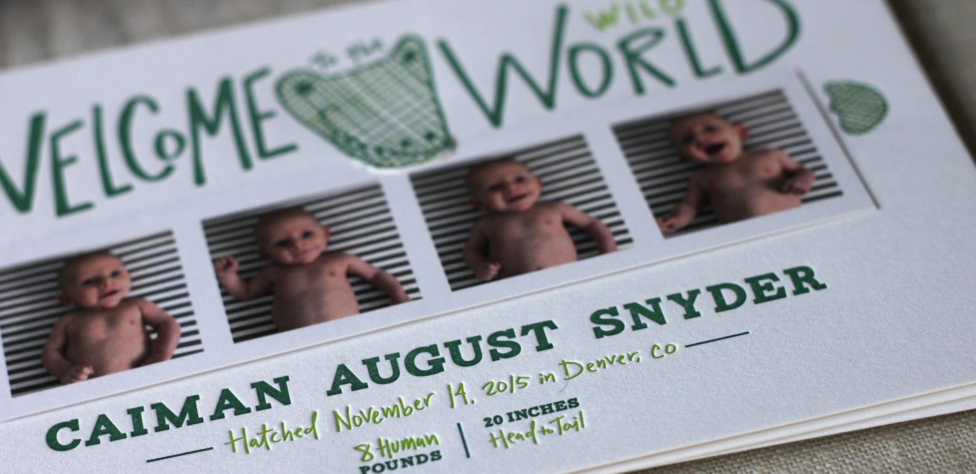 Alligator Birth Announcement