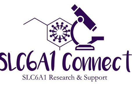 Get to Know SLC6A1 Connect