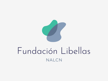 Get to Know Fundación Libellas