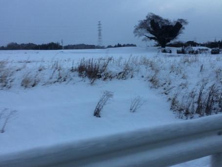 記録的な積雪