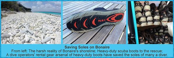 Saving Soles on Bonaire