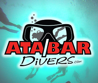 ATA/BAR Divers Logo