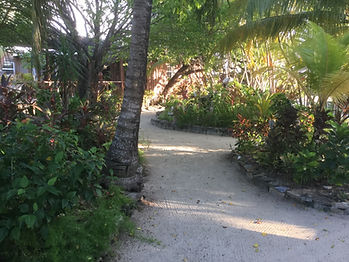 CoCo View Resort Walking Path Landscape
