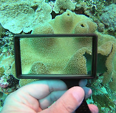 Magnifying glass underwater in action