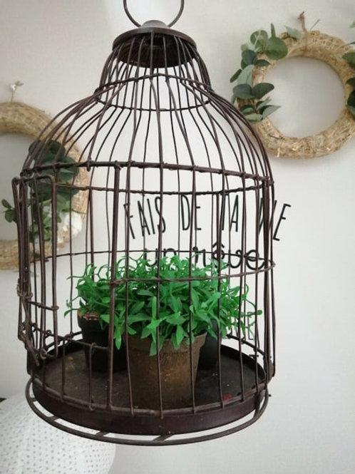 cage à oiseaux ou urne
