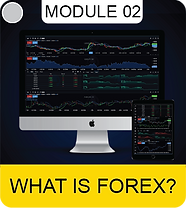 WHAT FOREX 99-01.png
