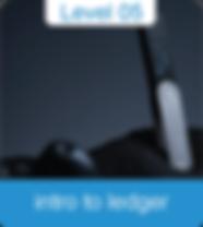 ledger 05-01.png