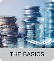 bb the basics-01.png
