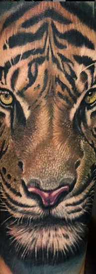 THE FAKAR tatuador guadalajara jalisco mexico realismo tigre tatuaje