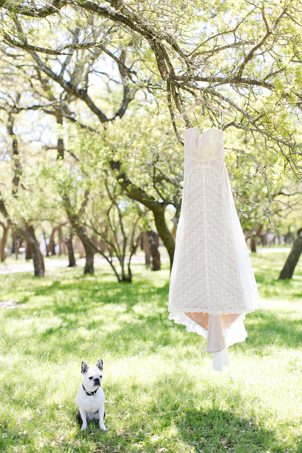 Eclipse Event Co, Mekina Saylor Photo, BHLDN Crochet Dress, French Bulldog