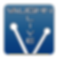 vaughn logo.png