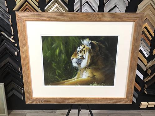 Tiger Tiger by Jean Pritchard