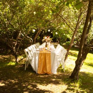 Forrest Wedding