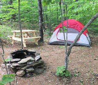 Wooded Campsite.jpeg