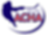 American_Collegiate_Hockey_Association_(