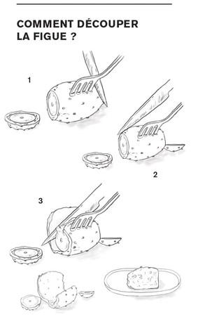 FIGUE_decoupe_illustration_on_va_deguster_litalie_illustrateur_cuisine_edited.jpg