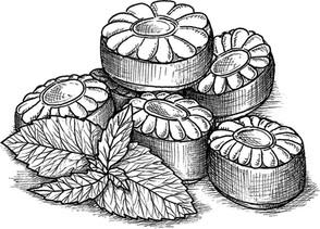 menthe_bonbon_illustration_on_va_deguster_litalie_illustrateur_cuisine.jpg