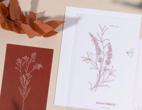 herbier-PAPETERIE-OCRE-PARIS-ILLUSTRATION-SOPHIE-RIVIERE.jpg