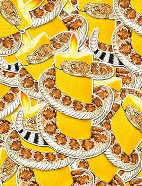 apis_cera_serpent_illustration_graphiste