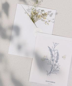 herbier-PAPETERIE-PARIS-ILLUSTRATION-SOPHIE-RIVIERE.jpg