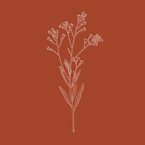 carte-invitation-mariage-botanique-ci-rouille-details-1.jpg.jpg