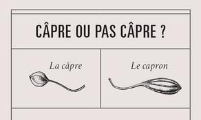capre_zoom_illustration_on_va_deguster_litalie_illustrateur_cuisine_edited.jpg