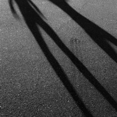 Happy shadows