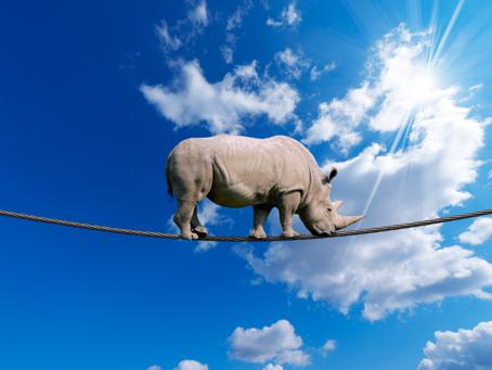 Warum es digitale Geschäftsmodelle so schwer haben