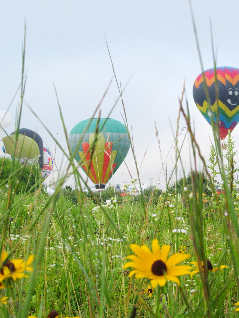 Traveleidoscope:  QuickChek Festival of Ballooning