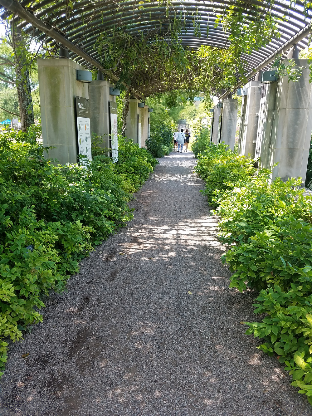 photo of arbor walkway