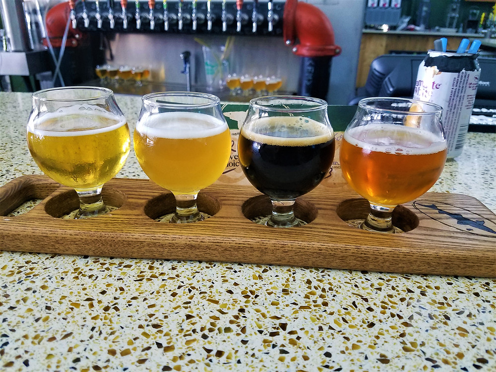 Photo of beer tasting at Dogfish Head Brewery