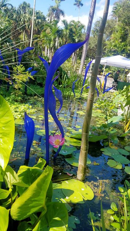 Stroll Fairchild Tropcial Botanical Garden In Miami