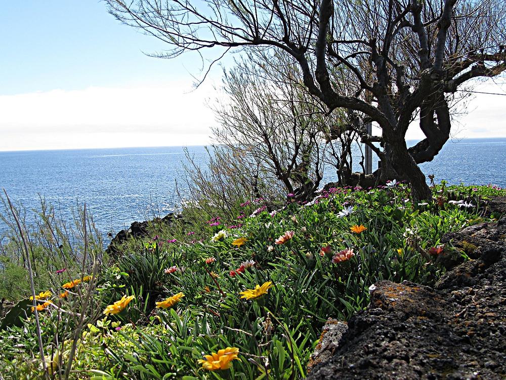 Traveleidoscope:  The Azores