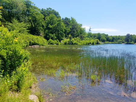 Crater Lake Trail - An Easy Day Hike in the Delaware Water Gap