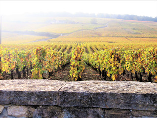 A Long Weekend in Burgundy France  - Part 3
