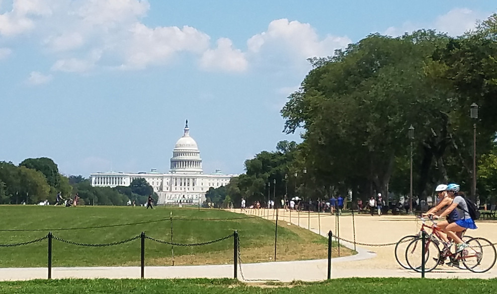 photo of people along the Washington Mall with Capitol Building in background