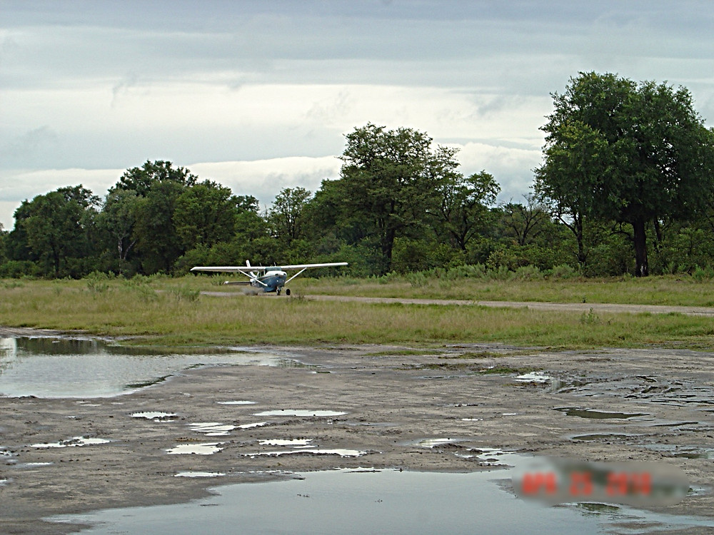 Flight from Moremi National Game Reserve.  Botswana.