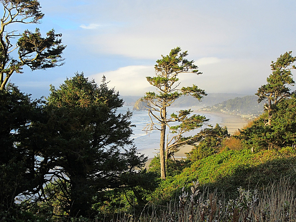 Traveleidoscope:  Along Oregon Highway 101