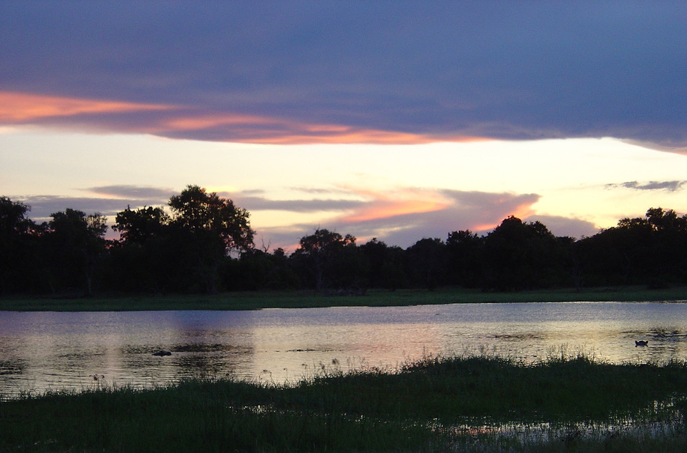 safari drive at dusk on water's edge with hippos in water