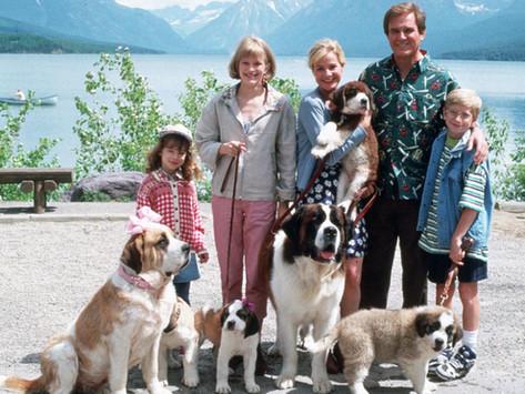 26 ფილმი, სადაც მთავარ როლს ძაღლები ასრულებენ