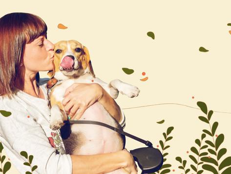 3 შეცდომა, რომელსაც  (თითქმის) ყველა ახალბედა ძაღლის პატრონი უშვებს