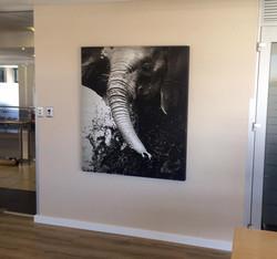 WKH House in Windhoek - Huge canvas prints2