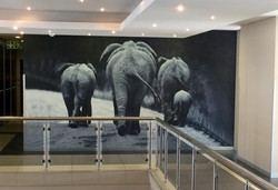 Wallpapers at WKH House in Windhoek